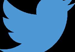Edenauto ouvre officiellement son compte Twitter !!!