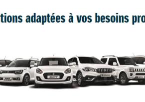 Suzuki : des solutions aux professionnels